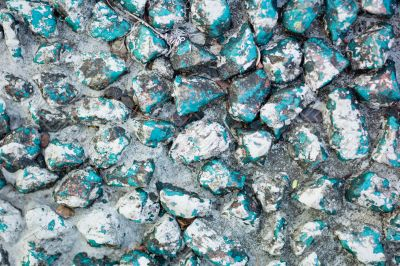 Blue Rocks in India
