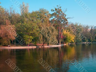 view of lake and trees