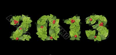 New year 2013. Date lined green leaves with red berry. Isolated