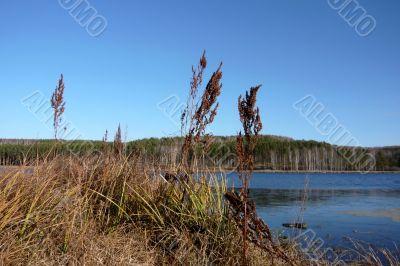 A simple autumn water landscape.