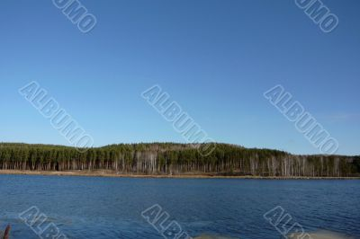 Lake, pine forests and clear skies.
