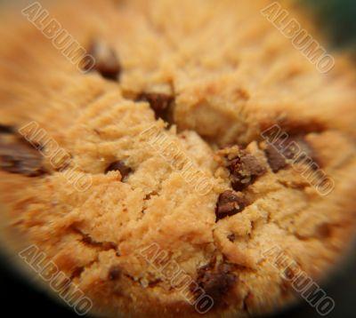 macro shot of a cookie