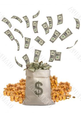 Moneybag with dollar notes flying and gold coins