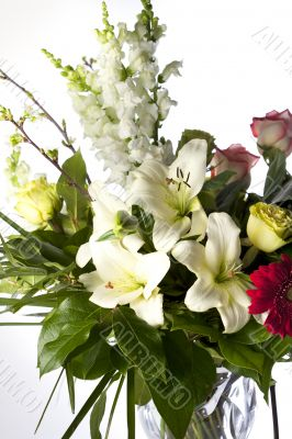 Vertical Bouquet on White
