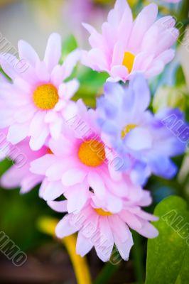 silk flower closeup