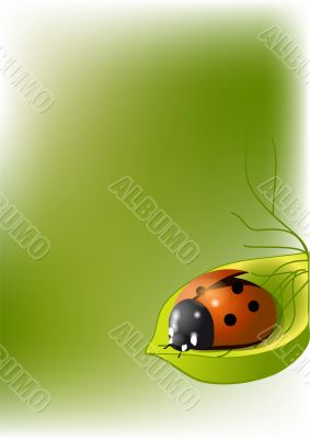 background with ladybug