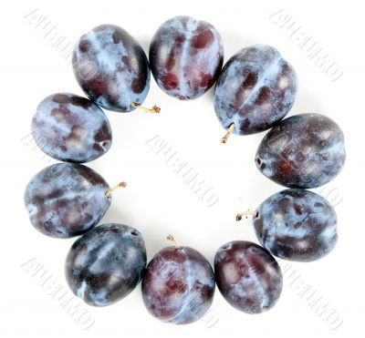Ripe plums arranged around