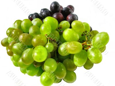 Bunch of white and red grape close-up.