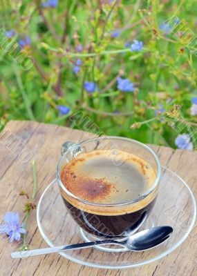 cup of chicory hot drink