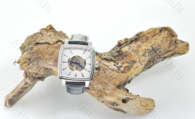 luxury watches with a leather strap
