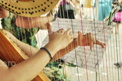 harp player
