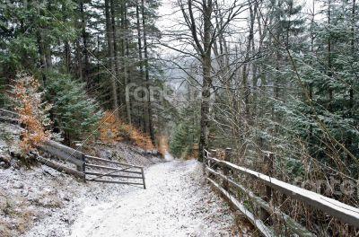 winter calm mountain landscape