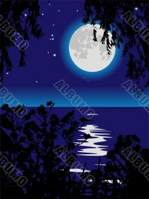 Lunar path on lake at night.