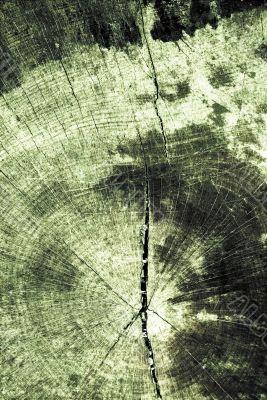Grunge textured wood pattern