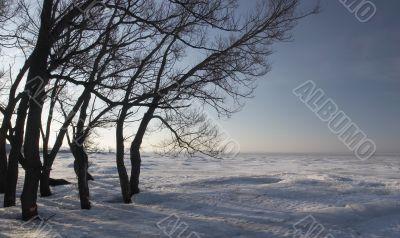 Spring morning on coast of the Finnish gulf