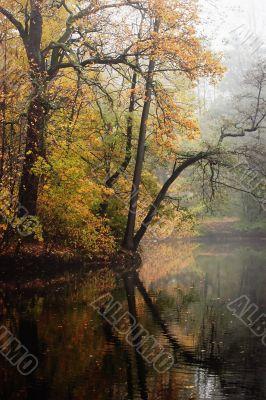 Corner of autumn park