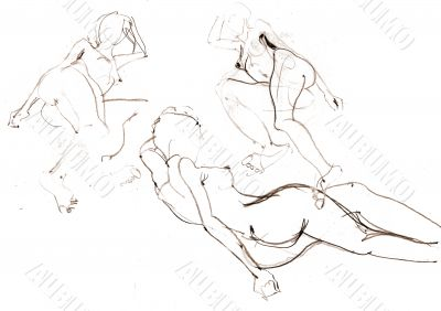 the sketch of naked women