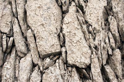 Muddy Stones Texture