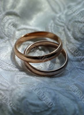 Wedding rings with ornaments