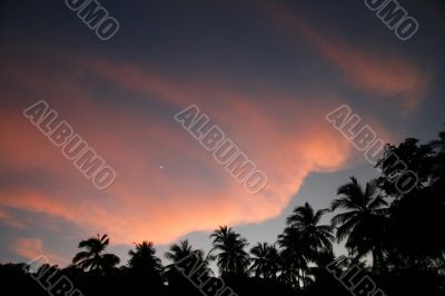Another tropical sunset