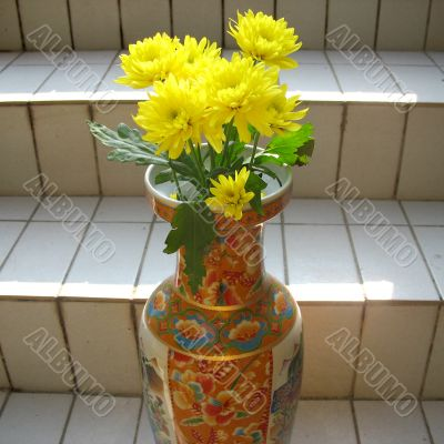 Chrysanthemums on the stairs