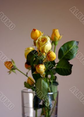 Bouquet from small roses