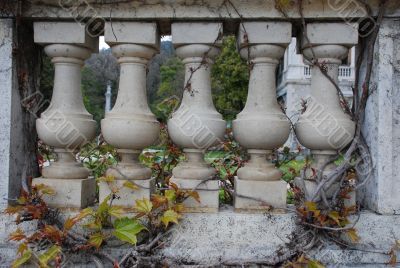 Stone Balustrade in branches of a vineyard