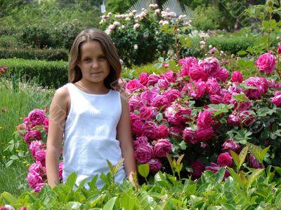 In botanical to a garden