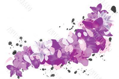 petal background