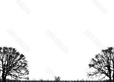 extra trees