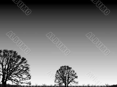 extra trees gradient