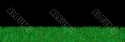 grass on black