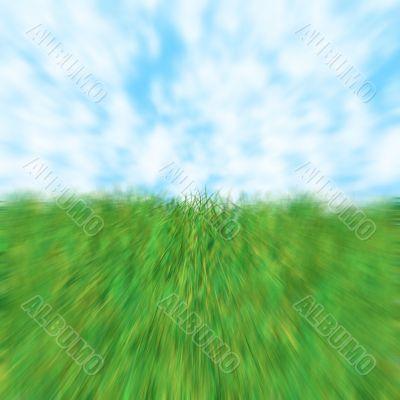 grass sky zoom