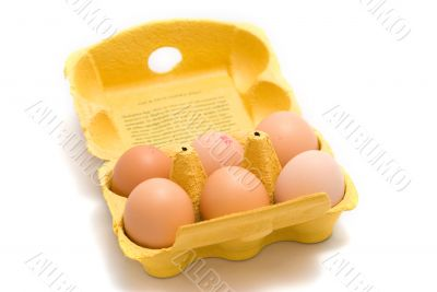 A carton of eggs from the top.