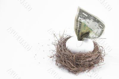 a concept of a financial nest egg