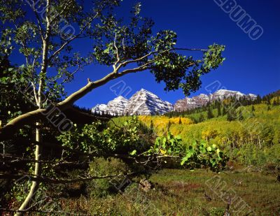 Maroon Bells & Branch
