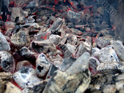 Cooling down coals of a fire.