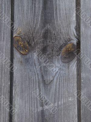 textured wooden plank 1