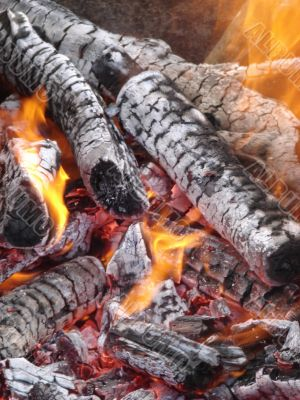 Flaming wooden logs