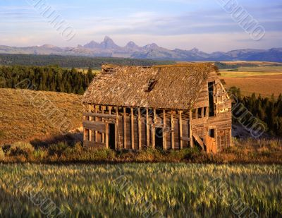 Tetons & Old House