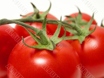 Tomatoes temptation