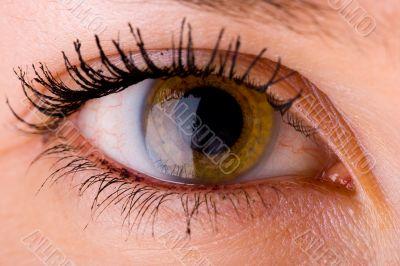 Eye close up 3