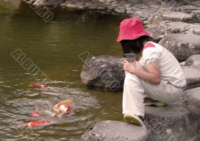 Kid feeding colorful carps