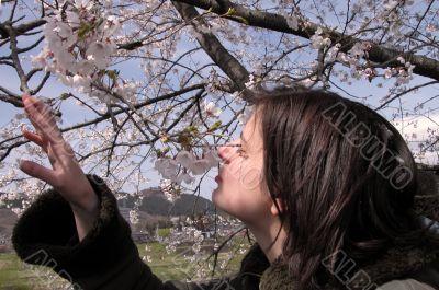 Girl smelling cherry flowers