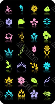 flowers and leaves. Vector objects.