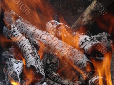 Flaming wooden coal logs of camping fireplace 03