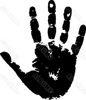 Print of a palm