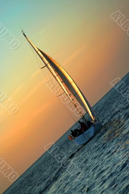 The Gold sails