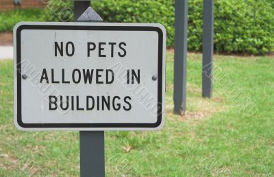 No Pets Allowed In Building