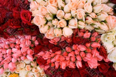 Bunch of roses 3